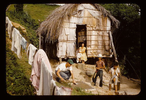 Casa de yagua y paja- Robert Yoder #11,993 Flikr Collection
